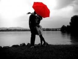 rode umbrella